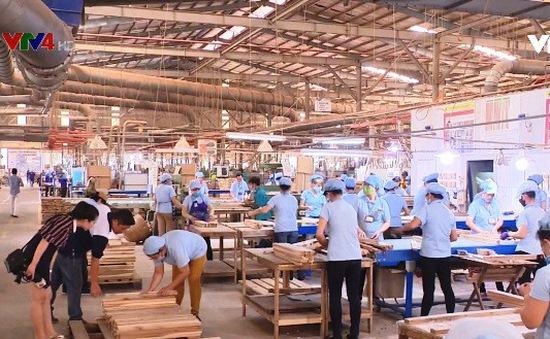 Đảm bảo nguồn gỗ hợp pháp tăng cường xuất khẩu vào châu Âu