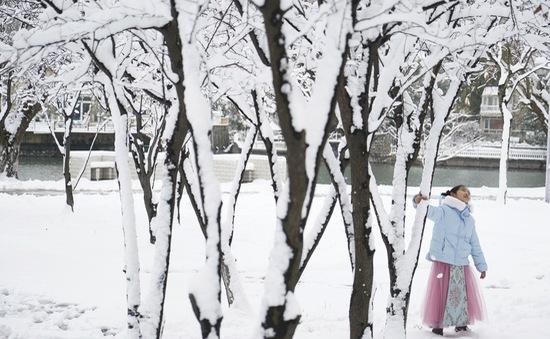 Bắc Kinh phát cảnh báo vàng do tuyết rơi