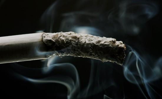 Hawaii xem xét dự luật cấm bán thuốc lá cho người dưới 100 tuổi