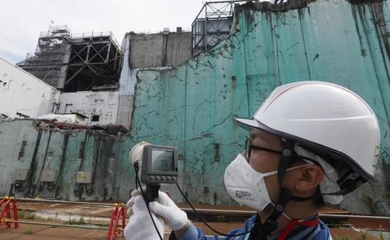 Nạn nhân thảm họa động đất, hạt nhân tại Nhật Bản có vấn đề về sức khỏe