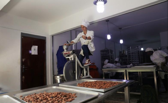 Sản xuất chocolate kết hợp… đạp xe
