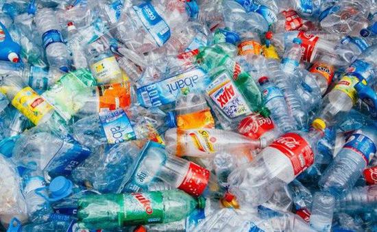 Sinh viên Đà Nẵng nói không với chai nhựa