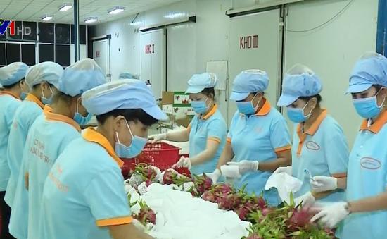 Trái cây lên giá vì Trung Quốc tăng mua