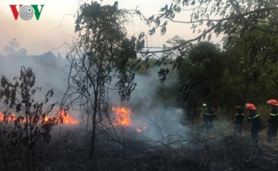 Cháy lớn thiêu rụi gần 5ha cao su và keo lai tại Đắk Nông