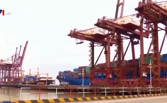 Thương mại toàn cầu giảm mạnh nhất kể từ năm 2009
