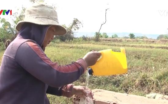 Nắng nóng kéo dài, người dân Gia Lai thiếu nước sinh hoạt