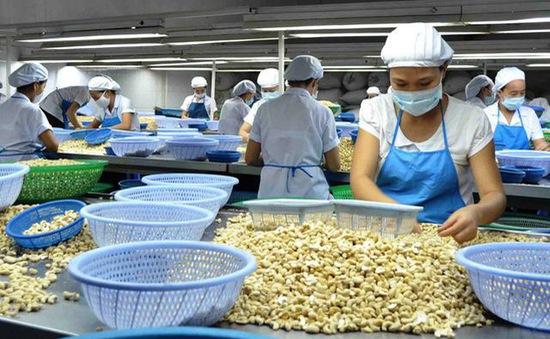 Doanh nghiệp trong nước tiếp tục là điểm sáng trong xuất khẩu