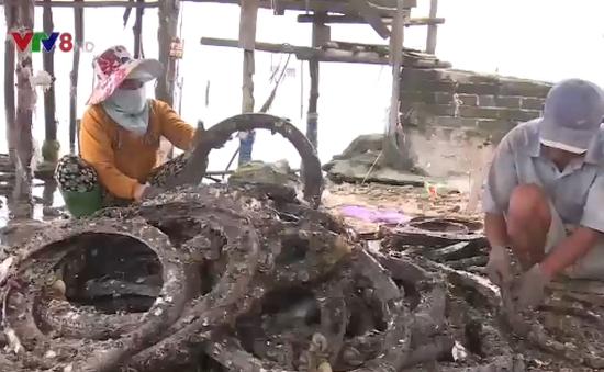 Ngư dân Thừa Thiên Huế làm giàu từ nuôi trồng thủy sản