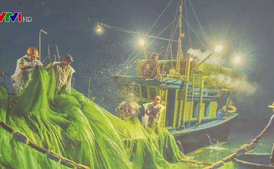 Triển lãm ảnh nghệ thuật về biển, đảo quê hương
