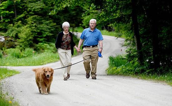 Một giờ đi bộ mỗi tuần có thể giảm nguy cơ mắc bệnh xương khớp