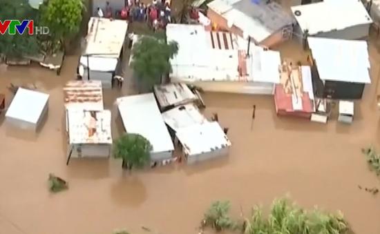 Gia tăng số người thiệt mạng do lũ lụt và lở đất ở Nam Phi