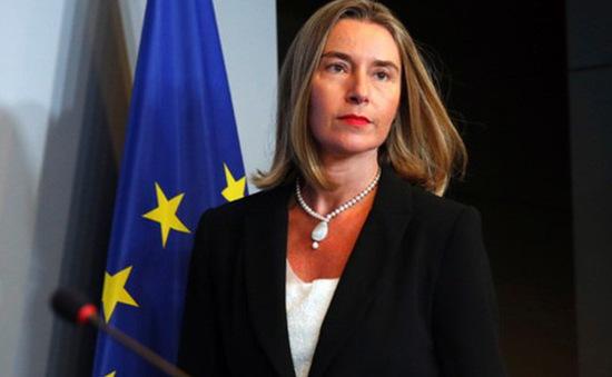 EU lên án Mỹ rút khỏi Hiệp ước Buôn bán vũ khí