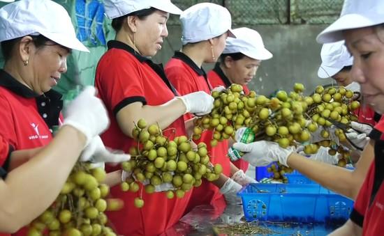 Quý I/2019, xuất khẩu nông, lâm, thủy sản của Việt Nam giảm gần 3%