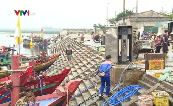 Hậu cần nghề cá yếu, ngư dân bỏ cảng