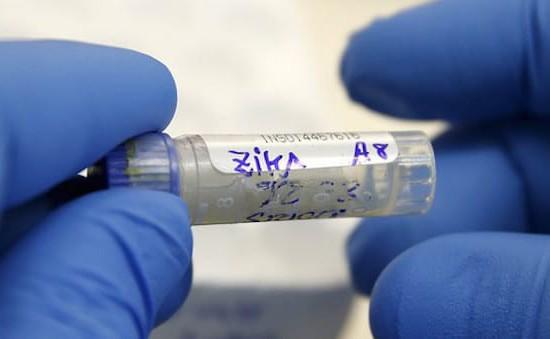Brazil phát hiện vaccine chống sốt vàng hữu dụng với Zika