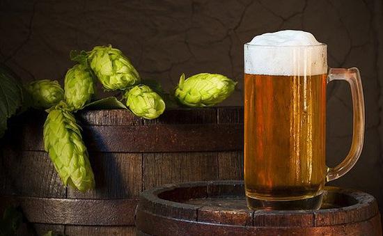 Phát hiện chất tiêu diệt ung thư trong hoa bia