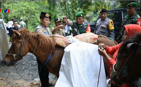 Hơn 300 nhân viên bầu cử Indonesia tử vong
