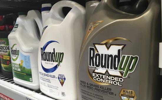 """Monsanto """"dính"""" bê bối truyền thông"""