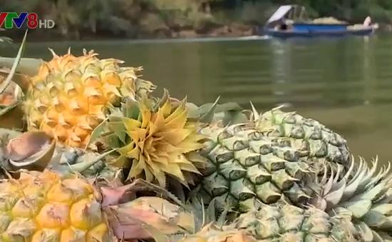 Phiên chợ thu mua thơm trên sông