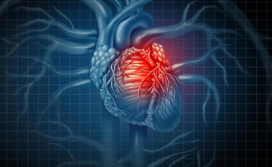 Nhật Bản đẩy mạnh nghiên cứu chữa bệnh tim bằng tế bào gốc