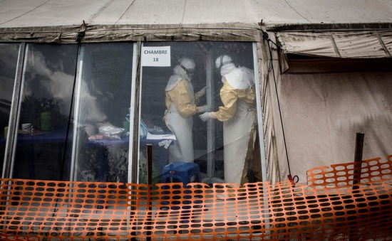 Báo động: Gần 1.000 người tử vong do đại dịch Ebola tại Congo