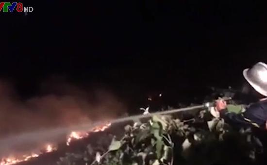 Cháy rừng Bãi Bắc bán đảo Sơn Trà