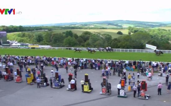 Đua ngựa - Môn thể thao lâu đời tại Anh