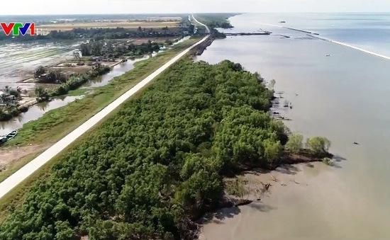 Nỗ lực ứng phó sạt lở bờ sông, bờ biển ở ĐBSCL