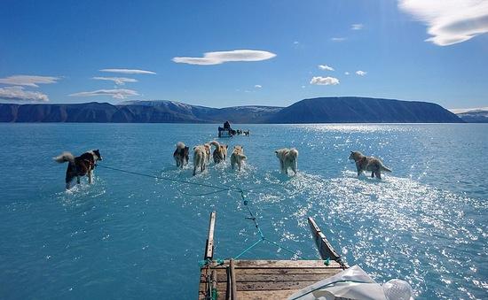 Bức ảnh lột tả hiện trạng băng tuyết tại Greenland gần đây