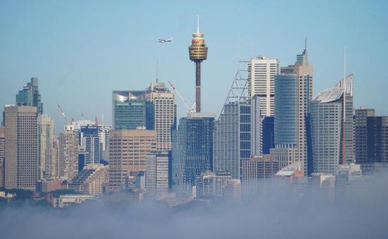 Gián đoạn giao thông do sương mù tại Sydney, Australia