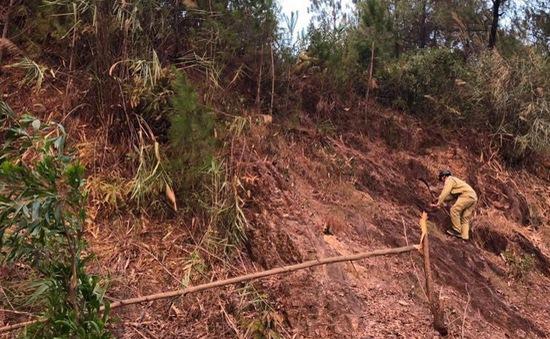 EVN khắc phục sự cố cháy rừng, lưới điện 500kV Bắc - Nam đã đảm bảo cấp điện