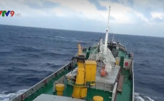 Cứu nạn vụ chìm tàu trên biển Hải Phòng