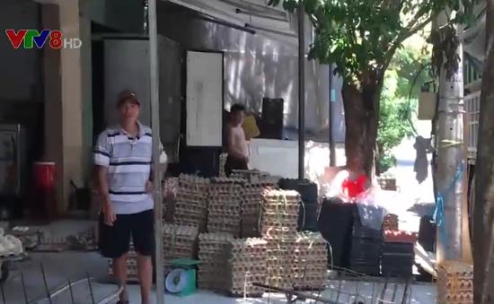 Hiểm họa từ các kho trứng gia cầm trong lòng thành phố