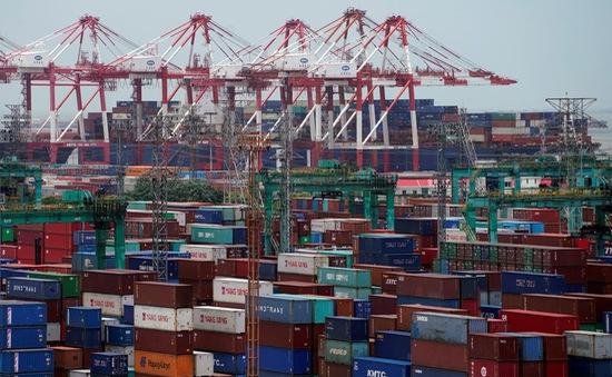 Đứt gãy chuỗi thương mại toàn cầu: Bài toán khó cho nền kinh tế Việt Nam