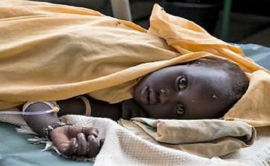 Gần 50 người thiệt mạng vì dịch tả tái bùng phát tại Cameroon