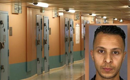 Dư luận Pháp dậy sóng vì tòa án bồi thường tiền cho khủng bố