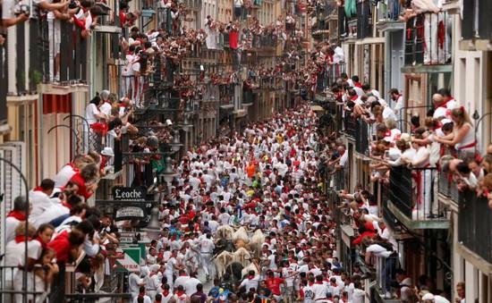 Lý do Tây Ban Nha không cấm lễ hội chạy đua với bò tót