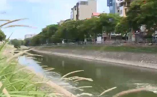Sông Tô Lịch biến đổi sau khi được dẫn nước từ Hồ Tây