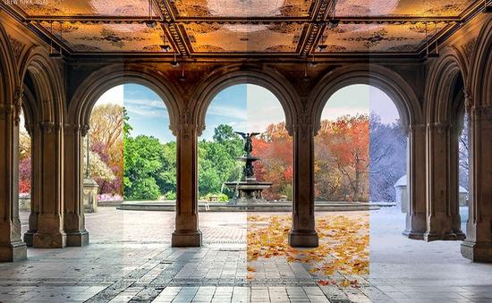 Ngắm nhìn vẻ đẹp 4 mùa của thiên nhiên chỉ qua một bức ảnh