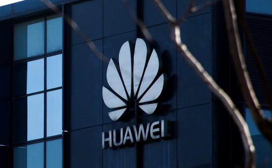 Huawei muốn sử dụng hệ điều hành Nga thay thế Android