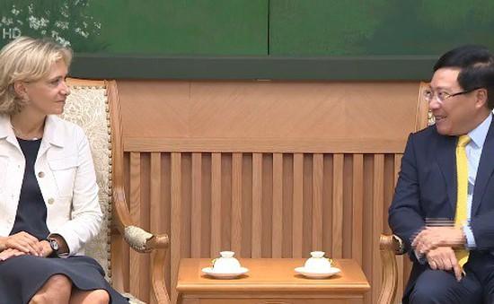 Tăng cường hợp tác Việt Nam - Pháp