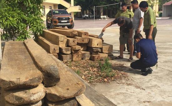 Lâm tặc tấn công kiểm lâm tại Quảng Bình
