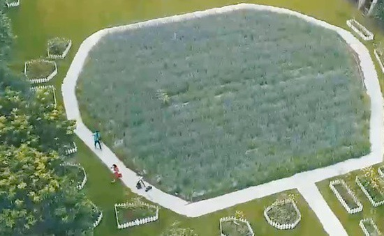 Nông dân Đài Loan (Trung Quốc) làm du lịch nông nghiệp