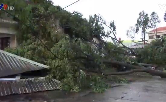 1 người chết, hơn 600 căn nhà bị ảnh hưởng vì dông lốc tại An Giang