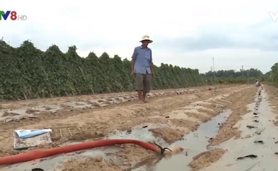 Chi phí cho nông nghiệp tăng cao do hạn nặng