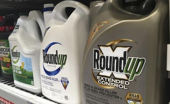 Monsanto tiếp tục đối mặt phán quyết yêu cầu bồi thường
