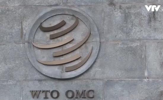 Vì sao cần cải cách WTO?