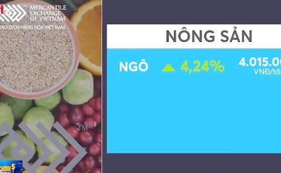 Giá các mặt hàng nông sản trên sàn Chicago hồi phục mạnh mẽ