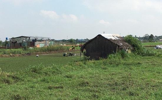 Giám sát thực hiện bồi thường giải phóng mặt bằng huyện Hóc Môn