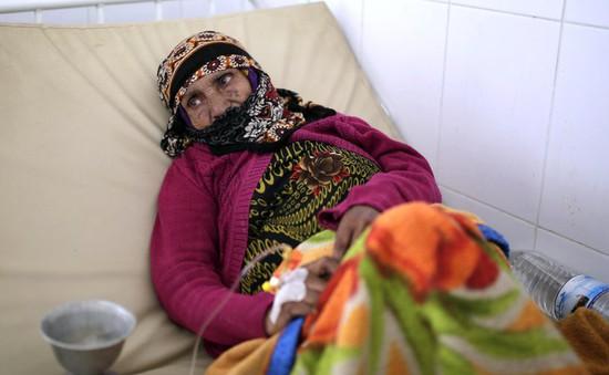 Báo động dịch tả ở Yemen